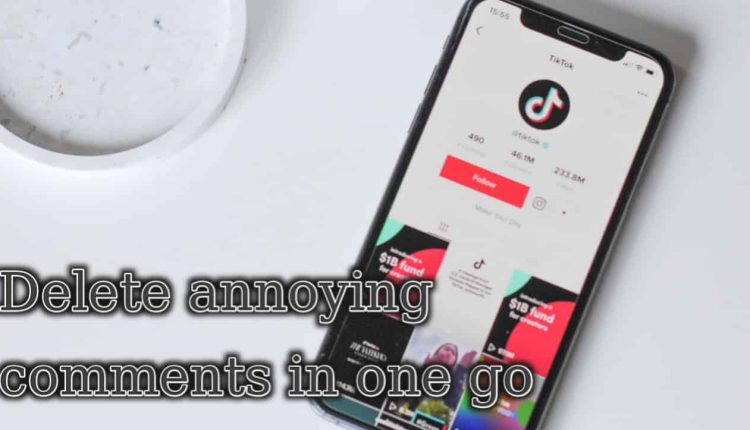 How to delete annoying comments in TikTok in one go